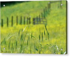 Acrylic Print featuring the photograph Beyond The Weeds by EricaMaxine  Price