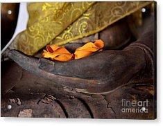 Bhumisparsa Mudra II In Colour Acrylic Print by Dean Harte