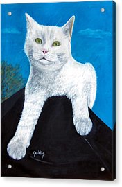 Bianca Acrylic Print by Paintings by Gretzky