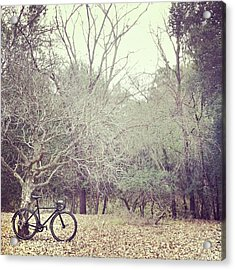 Bicycle Awaits At Entrance To Forest Acrylic Print by Joey Celis