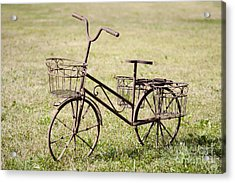 Bicycle Lawn Ornament Acrylic Print by Jaak Nilson