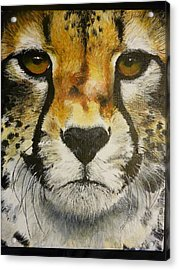 Big Cat Eyes Original Oil Painting 8 X 10 On Wrapped Canvas Provide Picture Acrylic Print