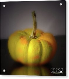 Big Pumpkin Acrylic Print by Bruno Santoro