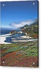 Acrylic Print featuring the photograph Big Sur by Renee Hardison