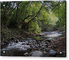Big Sur River Acrylic Print by Christine Drake