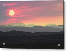 Bighorns At Sunset Acrylic Print