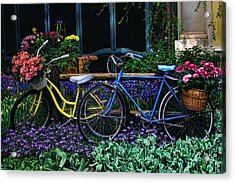Acrylic Print featuring the photograph Bike Ride by Tammy Espino