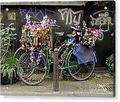 Bikes As Art Acrylic Print by Ed Rooney