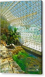 Biosphere2 - Environment 2 Acrylic Print by Gregory Dyer