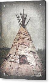 Birch Teepee Acrylic Print