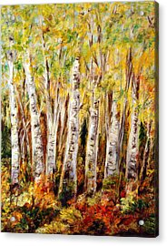 Birch Tree In Sunshine Acrylic Print