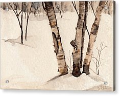 Birch Trees In The Snow Acrylic Print by Barb Kirpluk