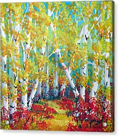 Birches In Autumn Acrylic Print by Sharon Marcella Marston