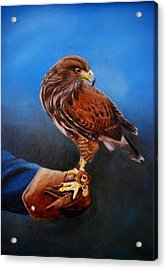 Acrylic Print featuring the painting Bird In The Hand by Lynn Hughes