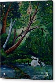 Bird In The Swamp Acrylic Print