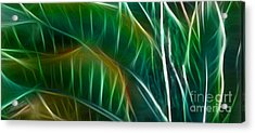 Bird Of Paradise Fractal Panel 3 Acrylic Print by Peter Piatt