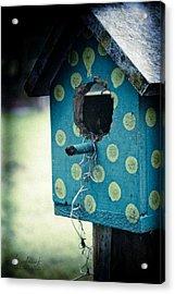 Birdhouse Memories Acrylic Print