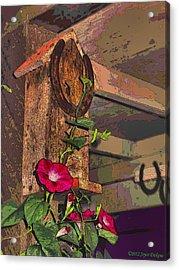Birdhouse Morning Glories Two Acrylic Print by Joyce Dickens