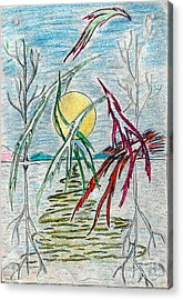 Birds Over Lake Acrylic Print by Yury Bashkin