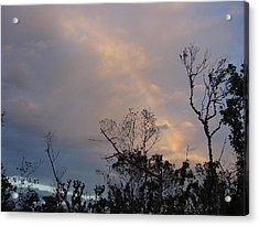 Birth Of A Rainbow Acrylic Print by Frank Wickham