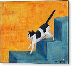 Black And White Cat Descending Blue Stairs Acrylic Print