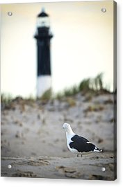 Black And White On The Beach Acrylic Print by Vicki Jauron