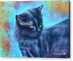Black Cat Color Fantasy Acrylic Print by Gabriela Valencia