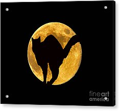 Black Cat Moon Acrylic Print