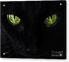 Black Cat Mystique Acrylic Print by Dale   Ford