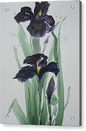 Black Iris Acrylic Print