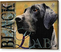 Black Lab Acrylic Print by Wendy Presseisen