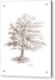 Black Oak Acrylic Print