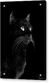 Black Portrait Acrylic Print