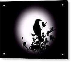 Blackbird In Silhouette  Acrylic Print by David Dehner