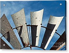 Blades Acrylic Print by Bob and Nancy Kendrick