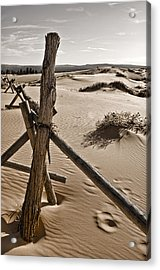 Bleak Acrylic Print by Heather Applegate
