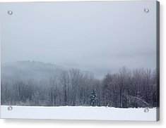 Acrylic Print featuring the photograph Bleak Mid-winter by Mary McAvoy
