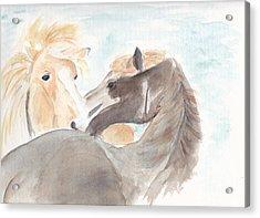 Blesi And Bear Acrylic Print by Debi Hamari