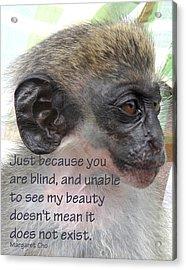 Blind Beauty Acrylic Print by Ian  MacDonald
