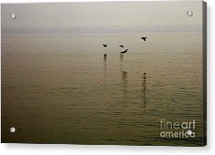 Acrylic Print featuring the photograph Bliss by Clayton Bruster