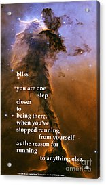 Bliss Acrylic Print by Richard Donin