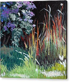 Bloodgrass And Asters Acrylic Print by Melody Cleary