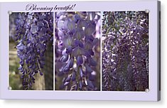 Blooming Beautiful Acrylic Print
