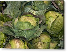 Blooming Cabbage Heads Acrylic Print by Dina Calvarese
