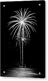 Blooming In Black And White Acrylic Print by Bill Pevlor