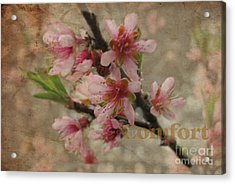 Acrylic Print featuring the photograph Blossoms by Tamera James