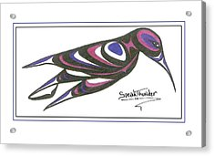 Blue And Purple Humming Bird Acrylic Print by Speakthunder Berry
