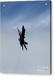 Acrylic Print featuring the photograph Blue Angel Solo by Alex Esguerra
