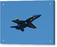 Acrylic Print featuring the photograph Blue Angel Solo by Samuel Sheats