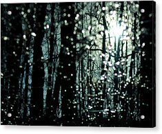 Blue Burns The Twilight Acrylic Print by Rebecca Sherman